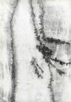 Giuseppe Pellegrino: Varianti di segni e scritture 3